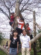 2007.4.1hanami (5).JPG
